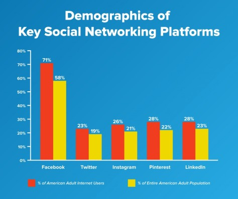 Demographics of Key Social Networking Platforms
